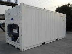 container 20' reefer new